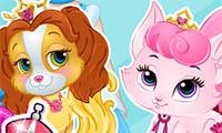 Concurso de belleza de mascotas de Baby