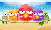 Vermoeide vogels