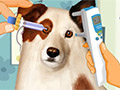 Dog With a Blog: Eye Care