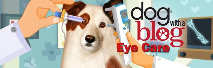 Stan, el perro bloguero: oculista
