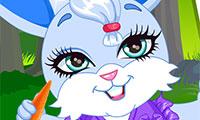 Conejo de fantasía