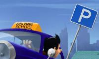 Driving Exam License