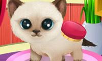 Tassande skönhet 3: Valpar och kattungar