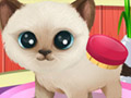 Salon Hewan 3: Anjing & Kucing