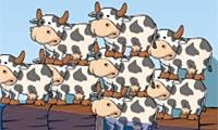 Vreemde koeien