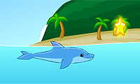 Star Splash: Dolphin Swimming Game