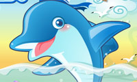 Schietende dolfijn