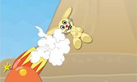 Lanzador De Conejo