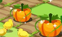 Tantangan Lahan Pertanian