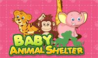 Zuflucht für Tierbabys