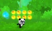 ¡Corre, panda!