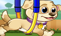 Pet Athletics: Animal Training Game