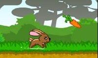 Rennend konijntje