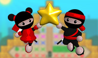 Ninja Pintor 2