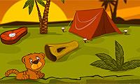 Тигриный остров: порадуй своего любимца