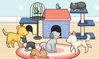 Decora el centro para mascotas