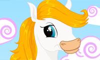 Klä söt häst