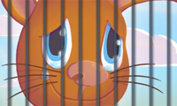Animales: Prision Break