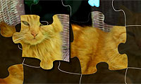 Un mundo de puzles: Gatos