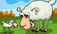 Zagubiona Owca