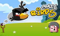 Pájaros locos