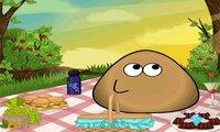 Piknik Pou