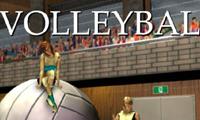 Game Voli 3D