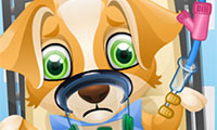 Cirugía de cachorros