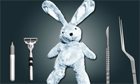 Cure the Bunny: Surgery Simulator Online Game