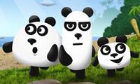 Trzy pandy