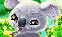 Dolblije koala