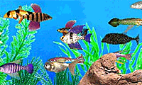 fish tycoon online free full version