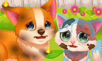Princesses Pet Beauty Salon