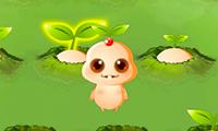 Baby Ginseng