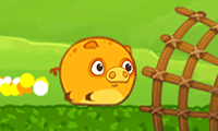Mango Piggy Piggy: Farm Harvest