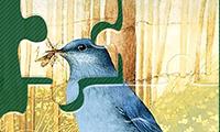 Пазл: Птицы