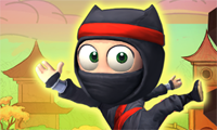 Ninja bestiga