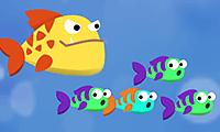 Vliegensvlugge vis