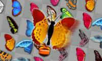 Butterfly Kyodai: Deluxe