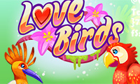 El Amor De Los Pájaros