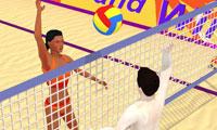 Summer Sports: Beach Volleyball online game