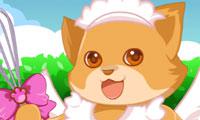 Bubu la chatte cuisinière