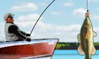 Maestro pescatore di spigole
