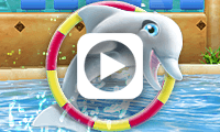 My Dolphin Show Trailer
