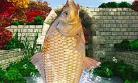 Pesca no Rio