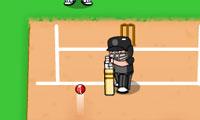 Super Six Cricket