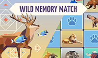 Wild Animals Memory Match