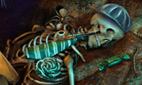 Pocket Creature: Hidden Objects