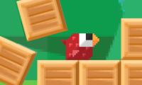 Carrera de pájaros